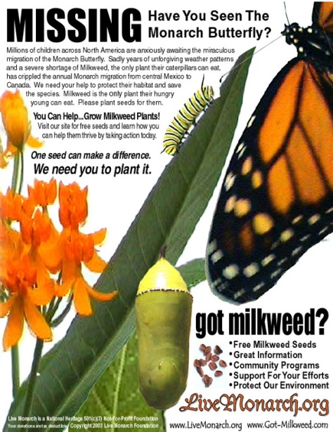 VOLUNTEER TO POST MONARCH BUTTERFLY SIGHTING PHOTOS!
